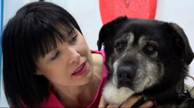 Schronisko Promyk  Pokochaj psa nie tylko w walentynki