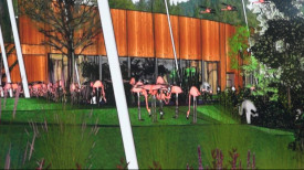 W gdańskim zoo powstanie olbrzymia zabudowa dla ptaków afrykańskich